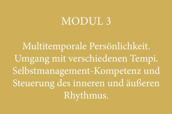 Modul 3 – Multitemporale Persönlichkeit. Umgang mit verschiedenen Tempi. Selbstmanagement-Kompetenz und Steuerung des inneren und äußeren Rhythmus.