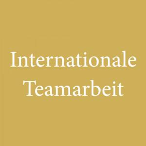 Internationale Entwicklungsprogramme